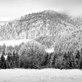 Invierno blanco en la montaña Ilustración del Vector