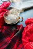 Invierno caliente Autumn Time New Year del vapor de la taza de té Fotografía de archivo