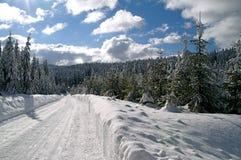 Invierno - camino de la nieve Fotos de archivo libres de regalías