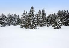 Invierno canadiense Foto de archivo libre de regalías