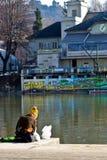 Invierno cerca del río Imágenes de archivo libres de regalías