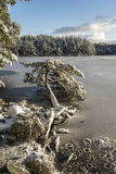 Invierno de Garten del lago en el parque nacional de Cairngorms Fotos de archivo libres de regalías