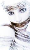 Invierno de Hairtalk revisted Fotografía de archivo libre de regalías