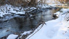 Invierno de la agua corriente del río del bosque último un paisaje derretido del hielo de la naturaleza, llegada de la primavera Foto de archivo