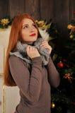 invierno de la Navidad del retrato de la mujer Imagenes de archivo