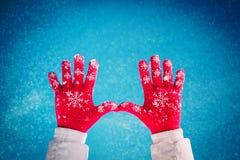Invierno de la nieve de la gente Fotografía de archivo