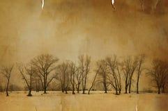 Invierno de la vendimia Fotos de archivo