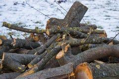 Invierno de madera del fuego Fotos de archivo
