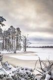 Invierno de Mallachie del lago en Escocia Imagenes de archivo