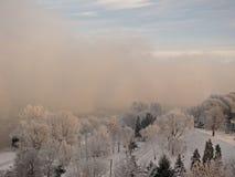 Invierno – de niebla Fotos de archivo
