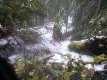 Invierno de Oregon Imagenes de archivo