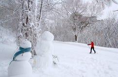 Invierno de Quebec Imagen de archivo libre de regalías