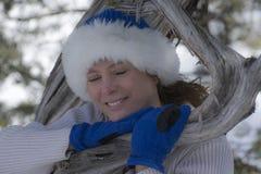 Invierno del árbol de Jen Imagen de archivo libre de regalías