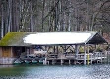 Invierno del bosque y del lago fotos de archivo libres de regalías