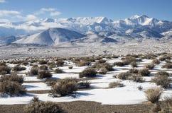 Invierno del desierto Imágenes de archivo libres de regalías