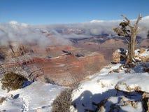 Invierno del Gran Cañón Imagen de archivo libre de regalías
