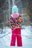 Invierno del niño en el parque fotografía de archivo libre de regalías