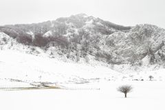 Invierno en Arraba. Natural Park of Gorbea Basque Country Stock Photos