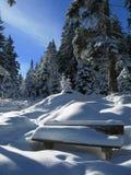 Invierno en Austria Foto de archivo libre de regalías