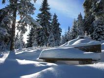 Invierno en Austria Imagen de archivo libre de regalías
