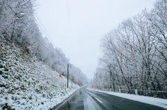 Invierno en Biei, Hokkaido, Japón Imagen de archivo libre de regalías