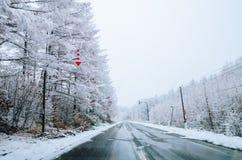 Invierno en Biei, Hokkaido, Japón Foto de archivo