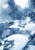 Invierno en bosque Imagen de archivo