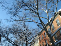Invierno en Brooklyn Fotos de archivo libres de regalías