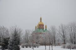 Invierno en el área del parque Imagenes de archivo