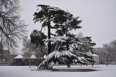 Invierno en el balneario de Leamington, Reino Unido - 10 de diciembre de 2017 Fotografía de archivo libre de regalías
