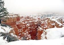 Invierno en el barranco de Bryce Fotografía de archivo libre de regalías