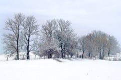 Invierno en el campo foto de archivo
