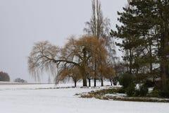 Invierno en el campo en Alemania Imagenes de archivo