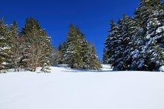 Invierno en el Feldberg en el bosque negro Imagenes de archivo
