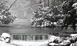 Invierno en el jardín inglés, Munich Imagen de archivo libre de regalías