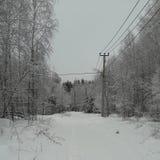 Invierno en el Kyiv Fotos de archivo