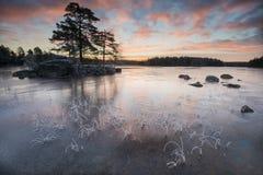 Invierno en el lago Fotos de archivo