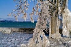 Invierno en el lago Suiza geneva Imagen de archivo