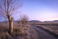 Invierno en el medio de España, Gallocanta Imagenes de archivo