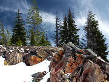 Invierno en el Mt hood Foto de archivo libre de regalías