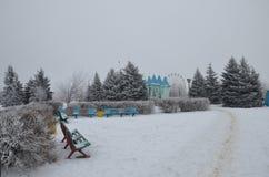Invierno en el parque de la ciudad Imagen de archivo libre de regalías