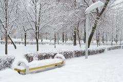 Invierno en el parque de la ciudad Imágenes de archivo libres de regalías