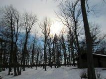 Invierno en el parque de Letchworth Fotografía de archivo