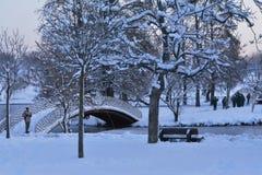 Invierno en el parque de Tineretului, Rumania Imagen de archivo