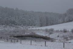 Invierno en el pasto trasero imagenes de archivo