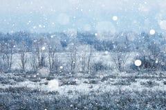 Invierno en el pueblo Foto de archivo libre de regalías