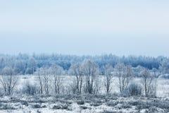 Invierno en el pueblo Foto de archivo