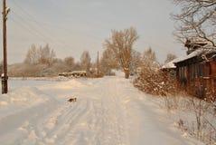 Invierno en el pueblo, mañana soleada, gato Fotos de archivo