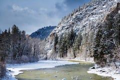 Invierno en el río de los Animas en Colorado Fotografía de archivo libre de regalías