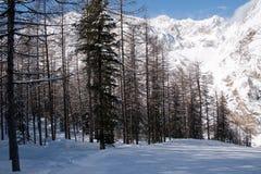 Invierno en el valle de Rhemes Imagenes de archivo
